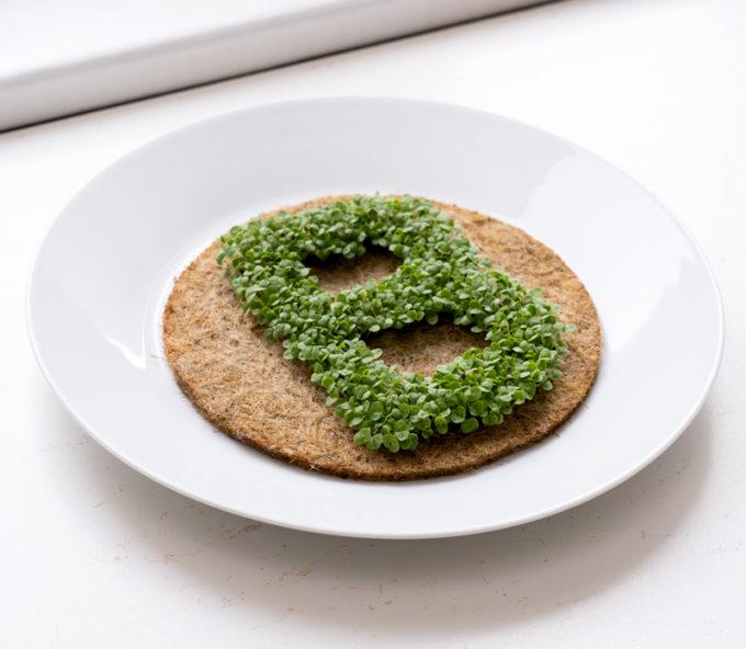 grüner kressebuchstaben