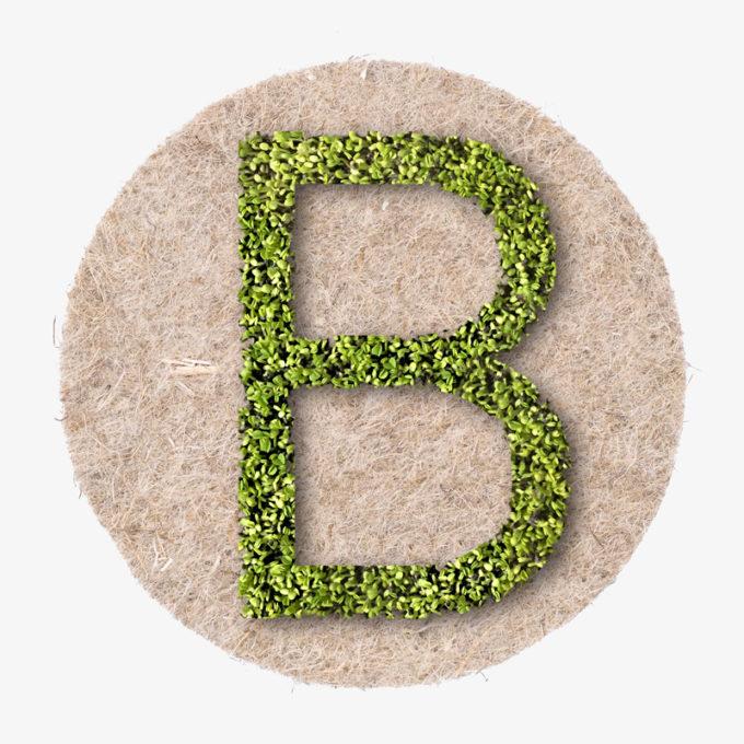Leafling Buchstabe B gewachsen aus Pflanzen