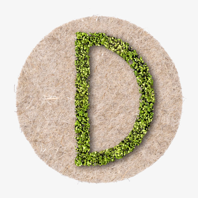 green plant letters to grow. a perfect gift for weddings