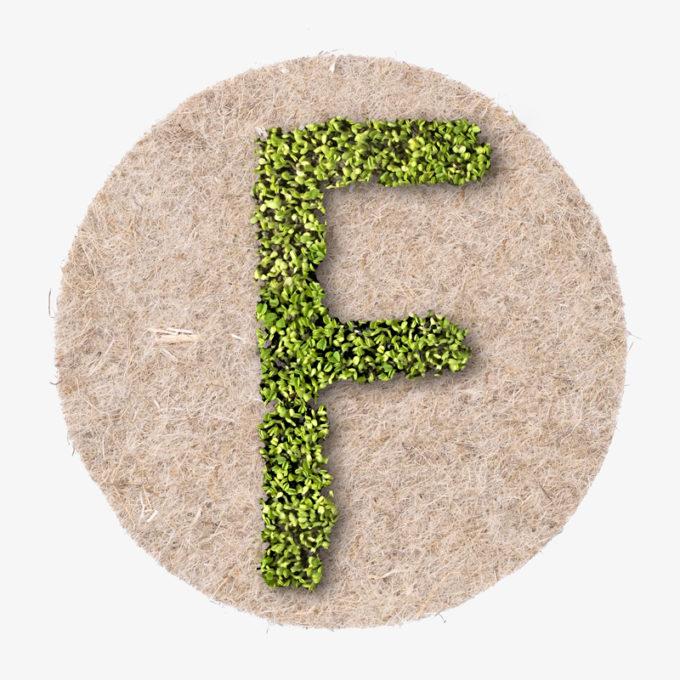 Buchstabe F aus wachsenden Pflanzen