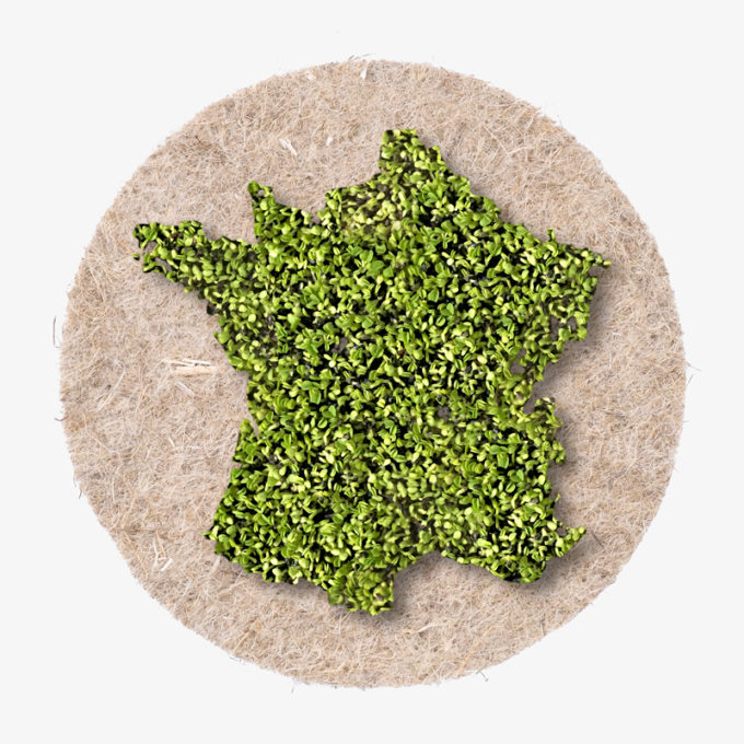 France shape out of green cress. Growing country shape