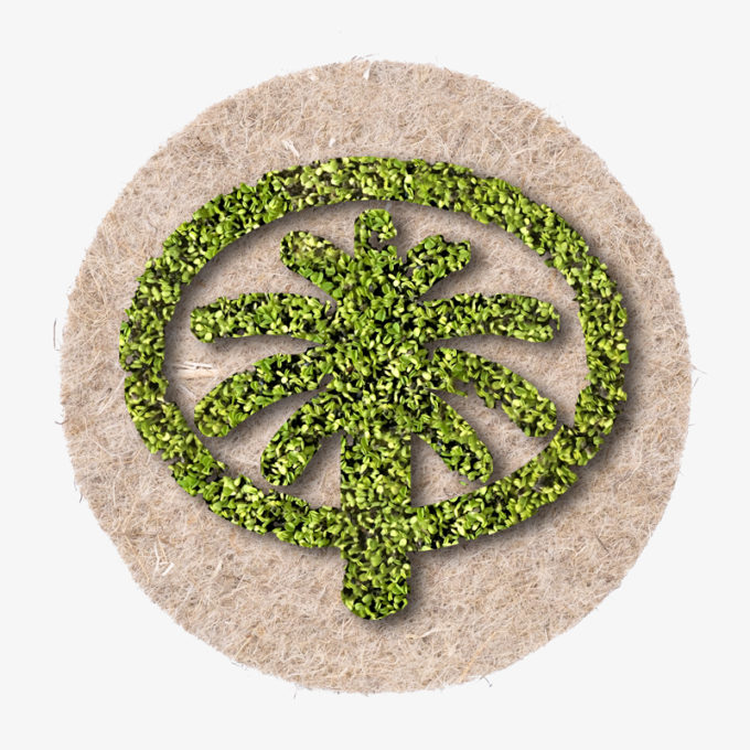 Palm Jebel island as green cress growing gift