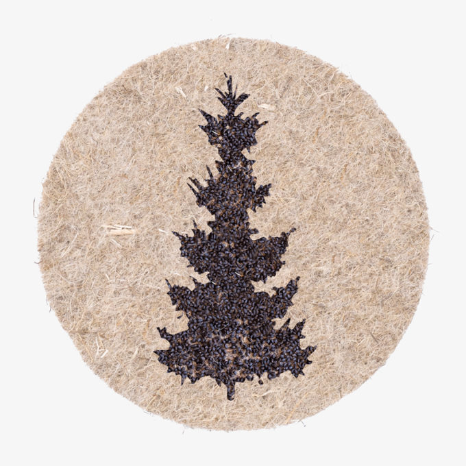 christmas-tree made with plant seeds which start to grow when you water them