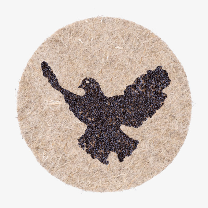 dove-of-peace made with plant seeds to grow
