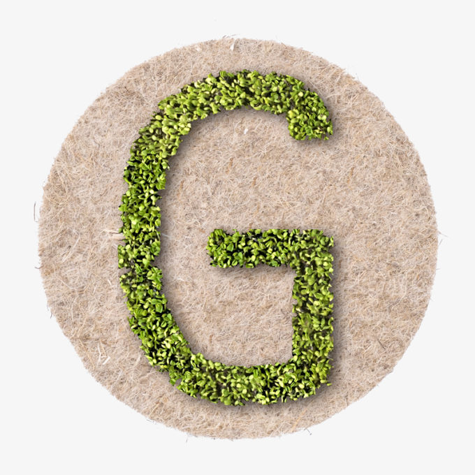 grown letter G with plants. the perfect spring gift