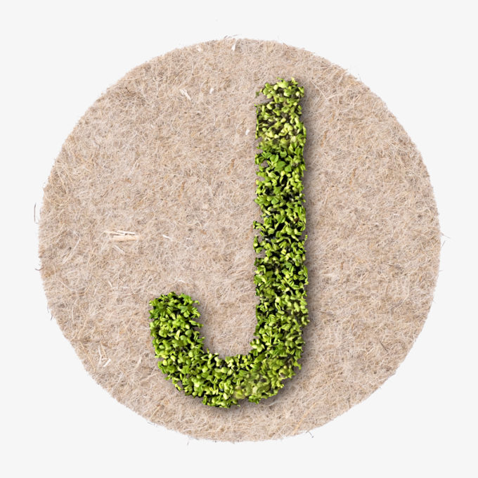 growing design letter. object from green cress seeds as design object