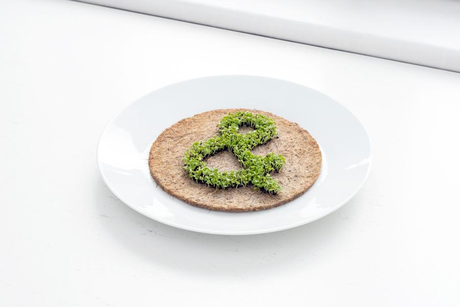 Leafling Anleitung. Ausgewachsenes Symbol aus grünen Pflanzen