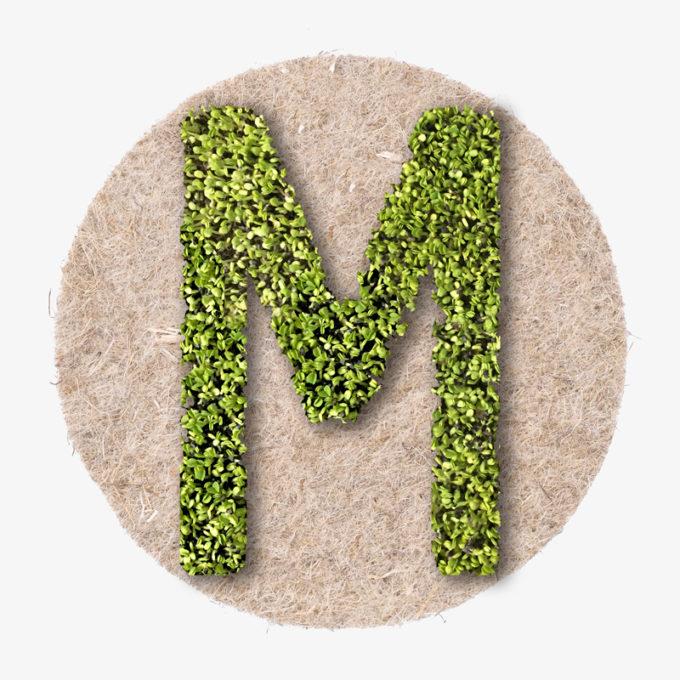grüner Pflanzen Designer Buchstabe aus WIen