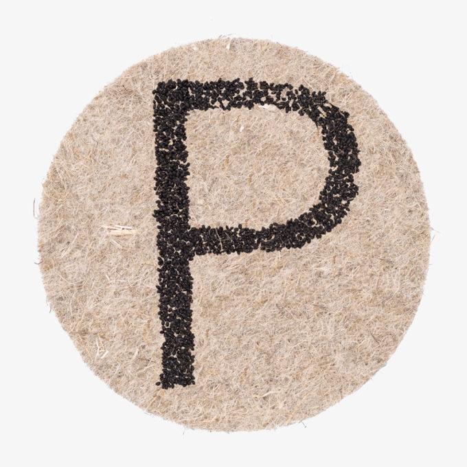 Buchstabe P aus Pflanzensamen