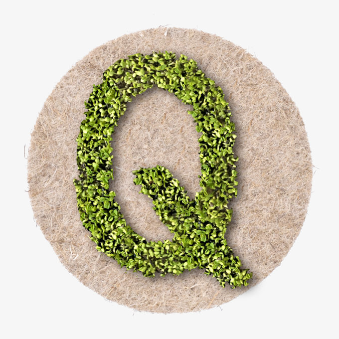 green Q designer letter with growing plants