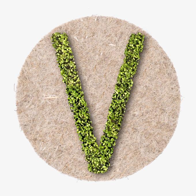 Buchstabe V aus grünen Kressepflanzen