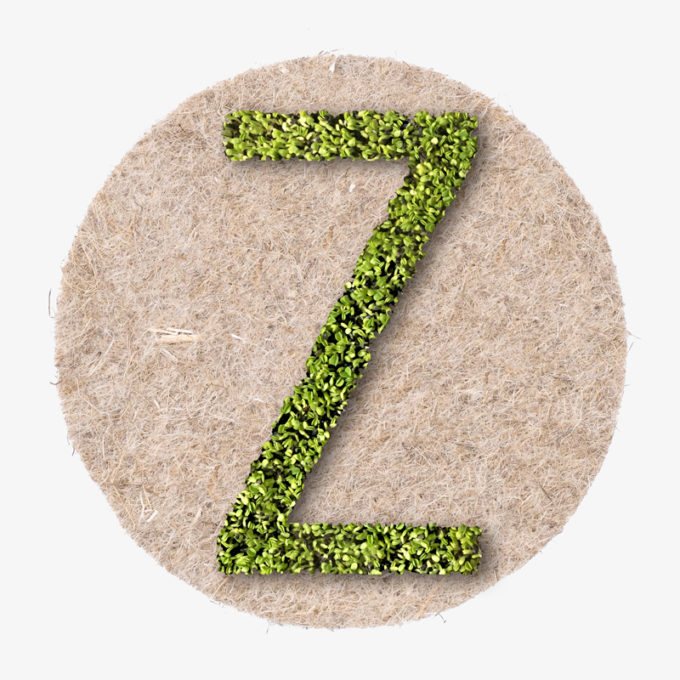 grüner Buchstabe aus Pflanzen zum wachsen lassen