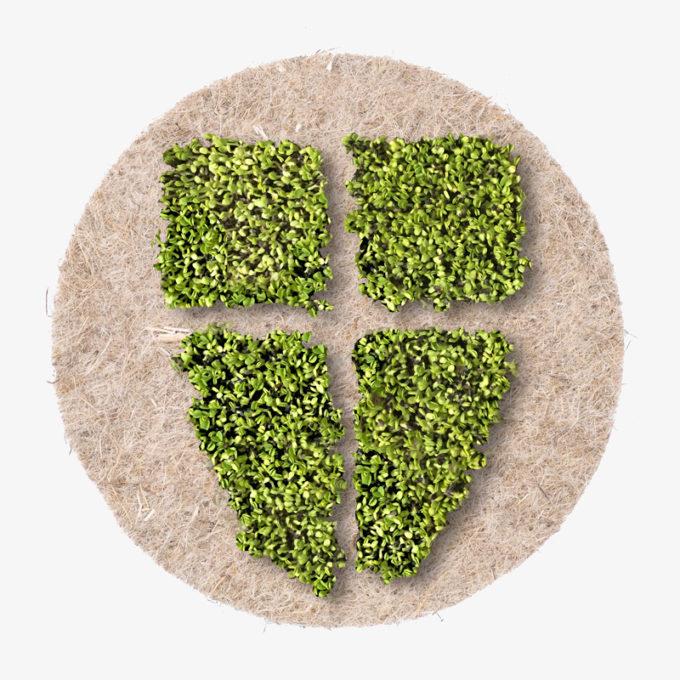 Wien Wappen auf grünen Pflanzen